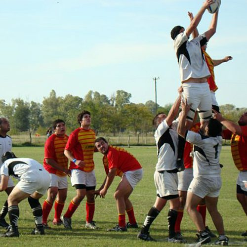 Rugby Line Out Argentina