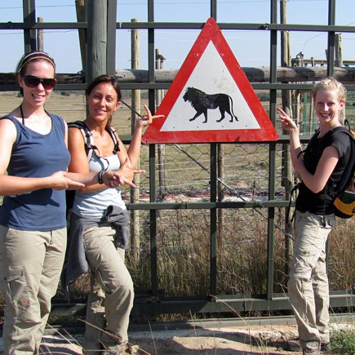 Visit Game Reserve in South Africa